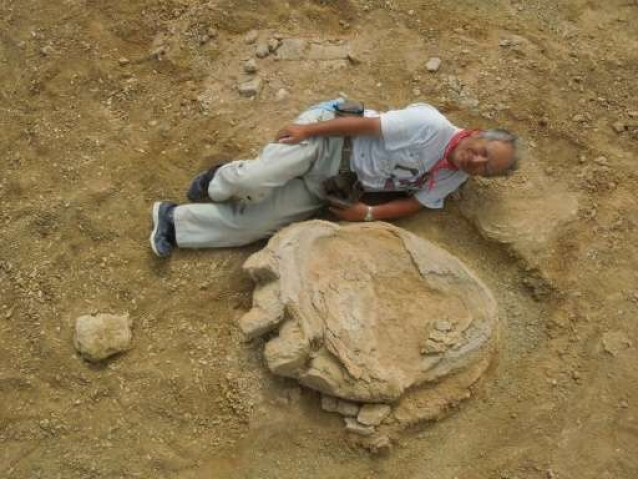 One of the biggest dinosaur footprints