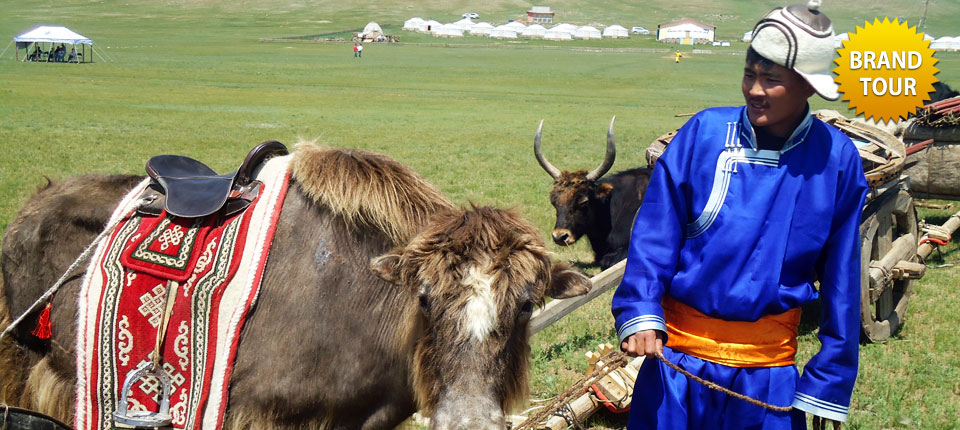 YAK TREKKING IN MOUNTAIN OTGONTENGER