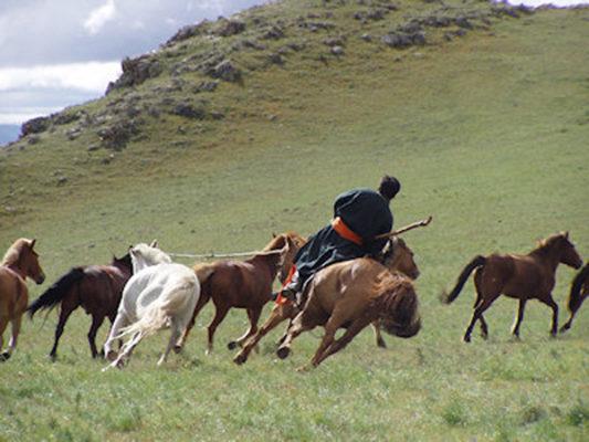 10-mongolia-ziegler-142-400